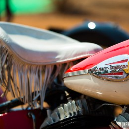 India Bike Week 2014 : énorme rassemblement custom en Inde !