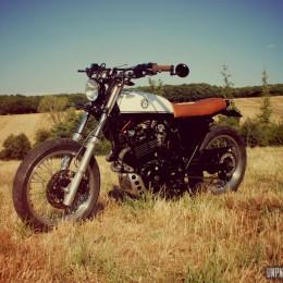 Honda XL600R scrambler : Tony nous revient avec un mono...
