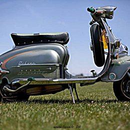 Les scooters sont-ils vraiment des bidets à roulettes ?