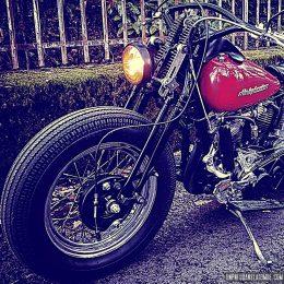 La Harley-Davidson Panhead 1956 beach racer de Fabien...