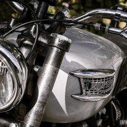 Triumph T100 1966 : un joli bobber rigide dans son jus !